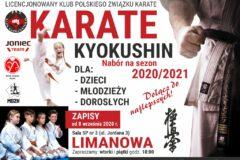 Karate Kyokushin – nabór do sekcji