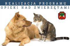 Realizacja Programu opieki nad zwierzętami bezdomnymi w Mieście Limanowa