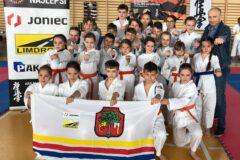 Dominacja młodych karateków ARS Limanowa – JONIEC Team  w Turnieju Karate Kyokushin o Puchar Wiślanego Smoka