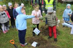 Zdjęcie przedszkolaków sadzących dąb w Parku Miejskim